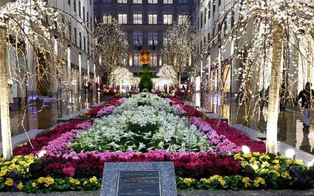 Rockefeller Center Channel Gardens