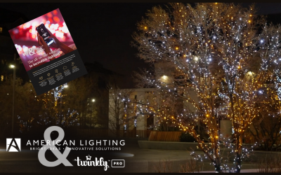 Maximize Your Holiday Lighting Season Profits With Twinkly Pro, The LED Game Changer.